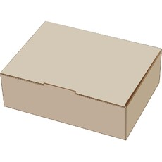 A4 Postage Box White